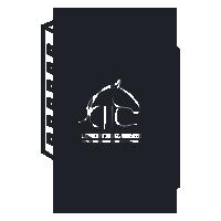 consulenza-icon